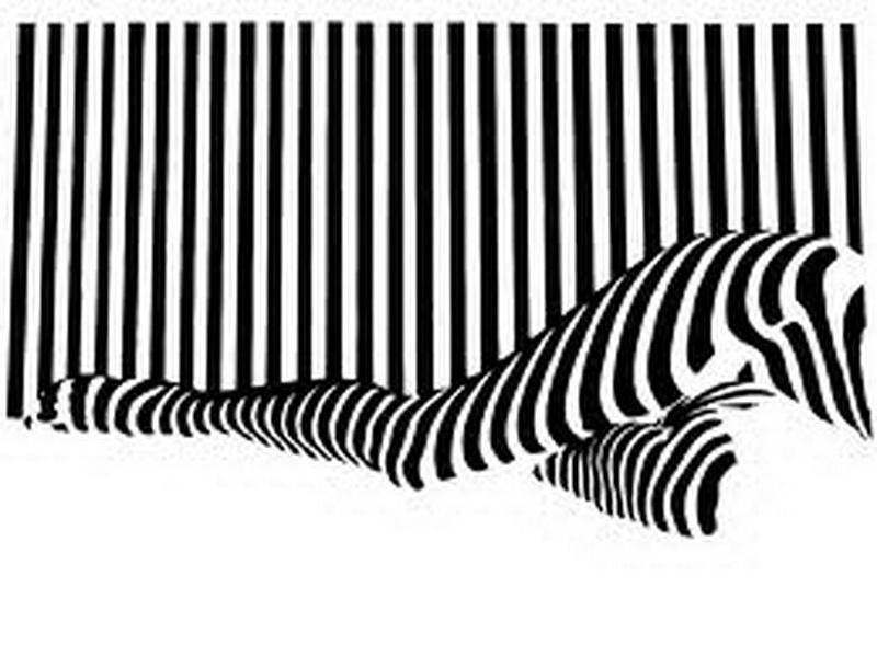 Unique black white stripe wallpaper